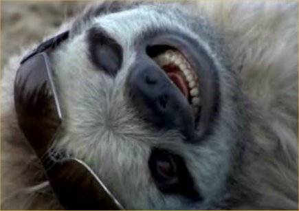 This sloth might be happy at the pace these negotiations are moving at but are we?